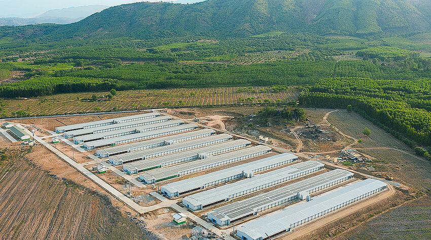 ภาพมุมสูง: ฟาร์มไก่พันธุ์ไก่เนื้อ